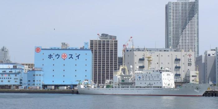 nau-UNI-A-TOKYO-P1080314-700x350