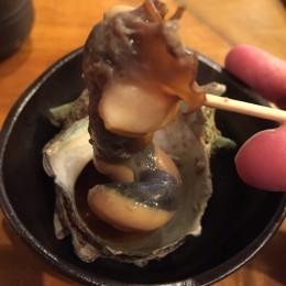 sazae-caracol-gigante-IMG_4961-260x260
